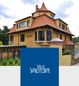 Luxury Spa & Wellness VILA VALAŠKA Luhačovice